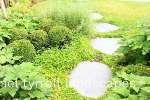 Paving stones with ground cover