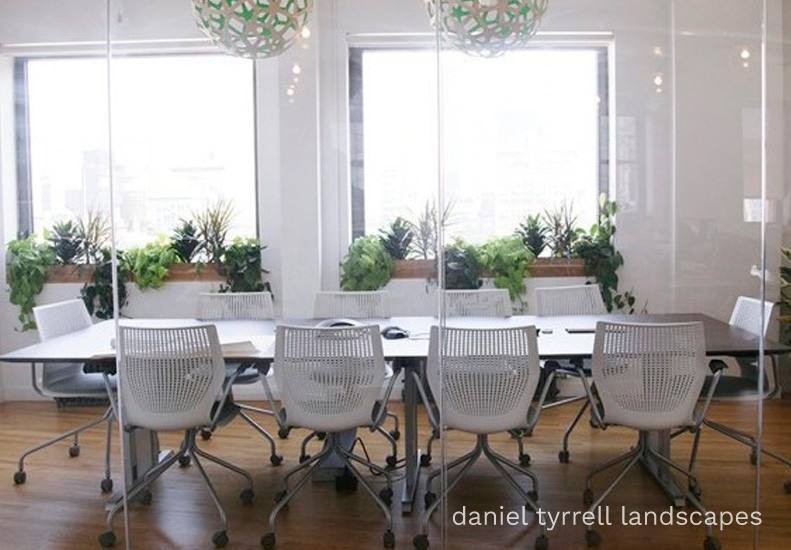 Great office spaces need green!